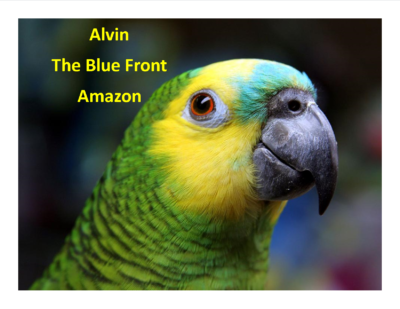 Alvin The Blue Front Amazon